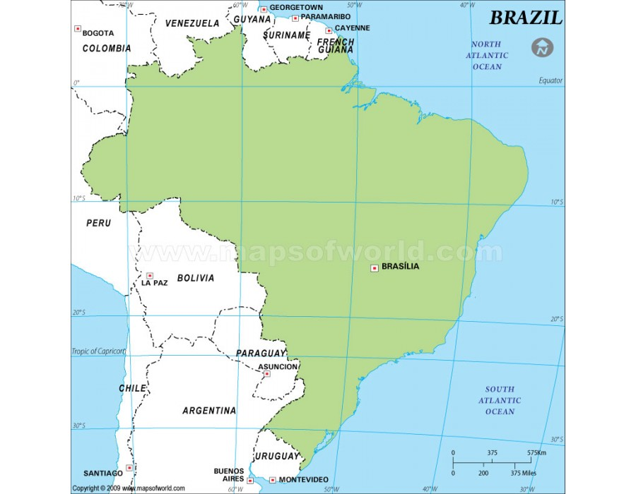 Buy brazil outline map in green color brazil outline map in green color gumiabroncs Gallery