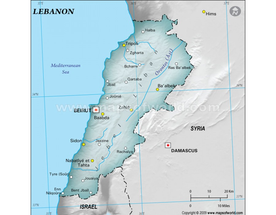 Buy Lebanon Physical Map Gray