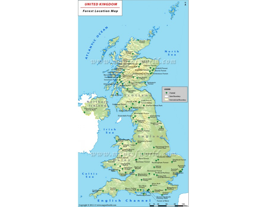 Map Of Uk Forests.Buy Uk Forests Map